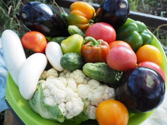 ABC diety bezmięsnej – przemyślany weganizm i wegetarianizm